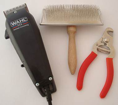 Pet Dog Grooming Kit