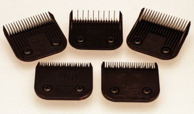 Wahl and Moser Clipper Blades